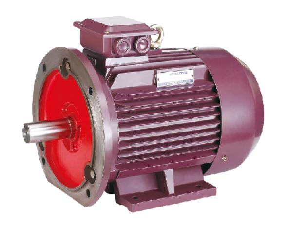 YE2高效电机